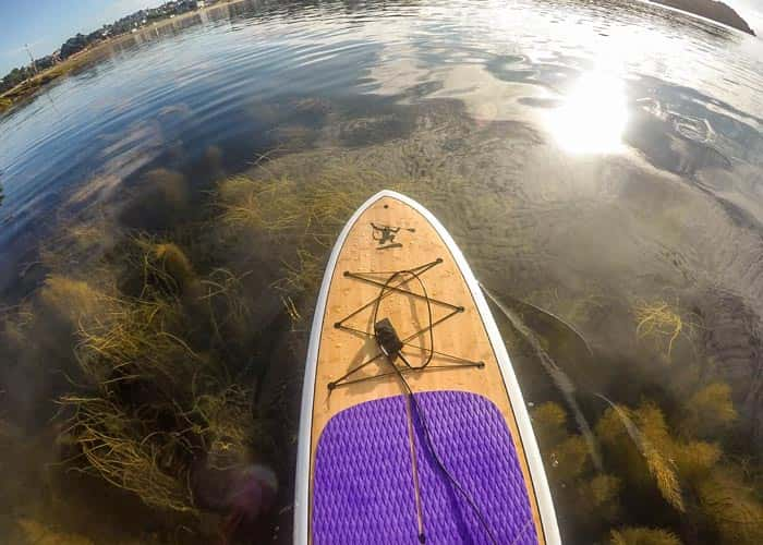 Emperor Purple Eva Deck - Ocean Monkeys Paddle Boards